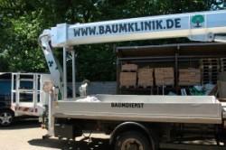 Fahrzeugbeschriftung Freeman Treeman Hamburg